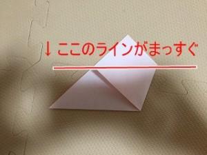 IMG_5417